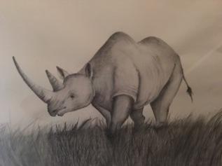 daddy's rhino